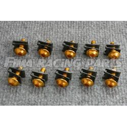 10 M6 Schrauben mit Clips und Mutter gold