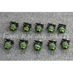 10 M6 Schrauben mit Clips und Mutter grün