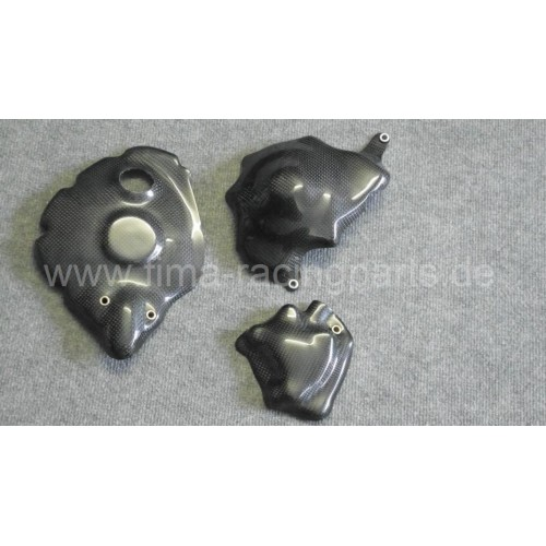 Carbon-Motorschutz komplett R1 09-14