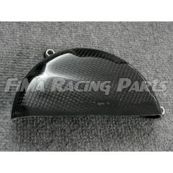 Panigale 899 1199 1299 Motorschutz komplett Carbon Ducati