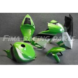 Design 003 Lackierbeispiel Kawasaki
