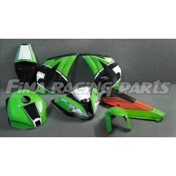 Design 004 Lackierbeispiel Kawasaki