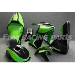 Design 008 Lackierbeispiel Kawasaki