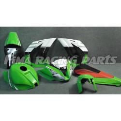Design 009 Lackierbeispiel Kawasaki