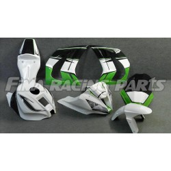Design 012 Lackierbeispiel Kawasaki
