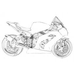 Design 001 Lackierbeispiel Kawasaki