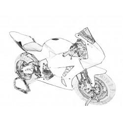 Design 000 Lackierbeispiel für Honda