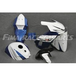 Design 017 Lackierbeispiel Suzuki