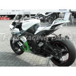 Design 017 Lackierbeispiel Kawasaki