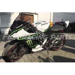 Design 024 Lackierbeispiel Kawasaki