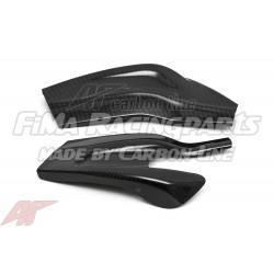 S1000RR 09-18 Autoclave Carbon Schwingenschutz für BMW