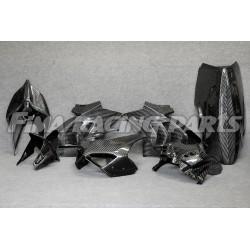 V4 Autoclave Carbon Winglets Ducati